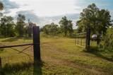 000 Cedar Hollow - Photo 2