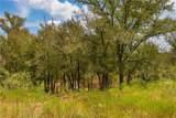 TBD (99.5 Acres) County Road 426 - Photo 21