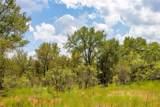TBD (99.5 Acres) County Road 426 - Photo 22