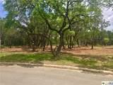 2303 Geneseo Oaks - Photo 1