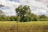 TBD (163.6 Acres) County Road 402 - Photo 19