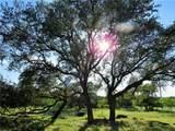 1095 Pedernales Hills Rd - Photo 21
