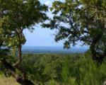 163 Cedar Mountain Dr - Photo 1