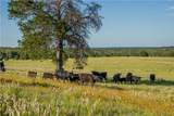TBD (+/-210.7 AC) County Road 361 - Photo 16