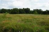 Tract 3B County Road 236 - Photo 13
