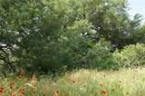 Tract 3B County Road 236 - Photo 26