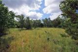 Lot 11A County Road 225 - Photo 19