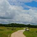 480 County Road 229 - Photo 6
