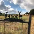 4500 Ranch Road 1623 - Photo 1