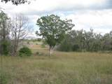 500 County Rd 401 - Photo 1