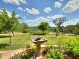 3401 Wolf Creek Ranch Rd - Photo 27