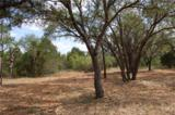3106 Pace Bend Rd - Photo 5
