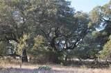 00 County Road 199 - Photo 4