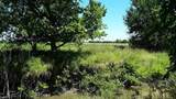 Lot 23  11.24 ac County Road 417 - Photo 5