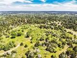 TBD 13 acres Herron Trl - Photo 1
