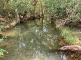 TBD Boggy Creek Rd - Photo 2