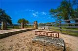 1115 County Road 414 - Photo 1