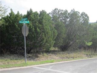 18401 Valley Hill Ln, Point Venture, TX 78645 (#1140048) :: Van Poole Properties