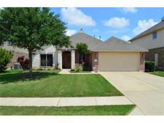 1041 Dyer Crossing Way, Round Rock, TX 78665 (#1231766) :: Forte Properties
