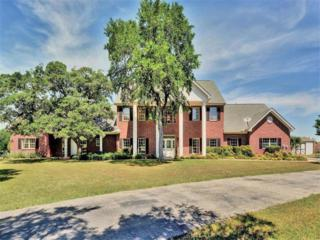 2601 N Highway 183, Liberty Hill, TX 78642 (#1613680) :: Forte Properties