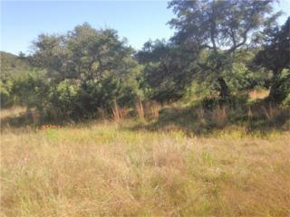 Lot 51 Montana Springs Dr, Marble Falls, TX 78654 (#1668056) :: Watters International