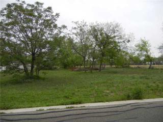 204 Brushy St, Hutto, TX 78634 (#1789228) :: Forte Properties