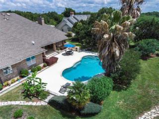 111 Diamond Trl, Georgetown, TX 78633 (#2358611) :: Forte Properties