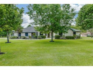 414 Allen Cir, Georgetown, TX 78633 (#3032259) :: Forte Properties