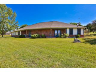 130 Catalina Court, Other, TX 78028 (#3826145) :: Forte Properties