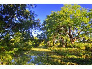 9701 Fm 967 N Side, Kyle, TX 78640 (#4129004) :: Forte Properties
