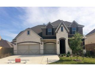 2917 Waterson St, Pflugerville, TX 78660 (#4731741) :: Watters International