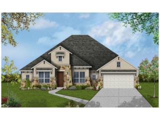 128 Lake Rim Cir, Georgetown, TX 78633 (#5239293) :: Forte Properties