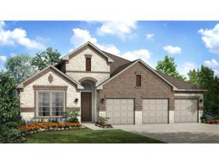 2624 Cataloni Cv, Round Rock, TX 78665 (#5318285) :: Watters International