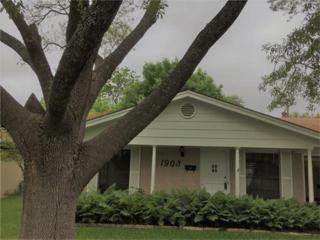 1903 Burbank St, Austin, TX 78757 (#5424644) :: Forte Properties