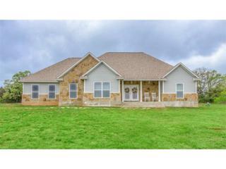 163 Arbor Hill Way, Cedar Creek, TX 78612 (#5479564) :: Watters International