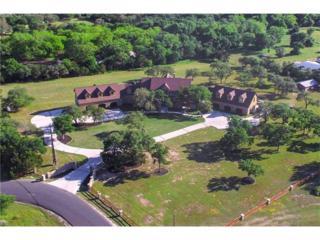 701 Starwood Dr, Cedar Park, TX 78613 (#5785968) :: Forte Properties