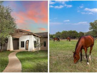 1001 Rivercliff Rd, Spicewood, TX 78669 (#6178113) :: Forte Properties