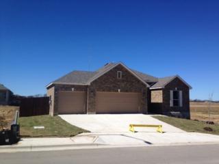 1058 Toltec Trl, Georgetown, TX 78626 (#6421481) :: Watters International