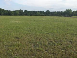 649 Silver Creek Dr, Leander, TX 78641 (#6920572) :: Forte Properties