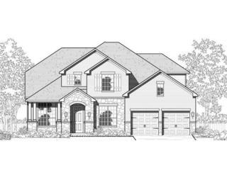 3052 Margarita Loop, Round Rock, TX 78665 (#7084618) :: Forte Properties