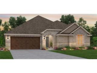 1709 Humble Live Dr, Leander, TX 78641 (#7224011) :: Forte Properties