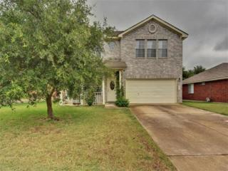 1011 Terra St, Round Rock, TX 78665 (#7442640) :: Watters International