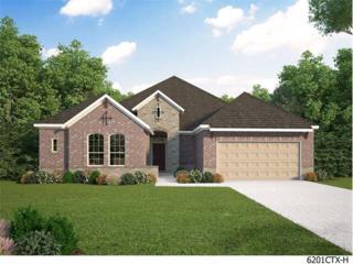 4045 Mercer Rd, Georgetown, TX 78628 (#7667552) :: Forte Properties