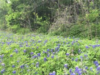 TBD Lone Star Road, Bastrop, TX 78602 (#7761297) :: Van Poole Properties