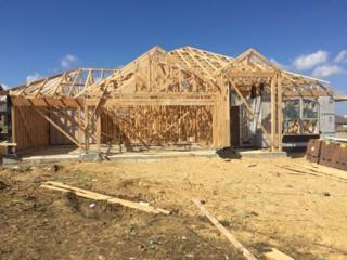 5004 Yucca Bloom, Georgetown, TX 78626 (#8027043) :: Van Poole Properties