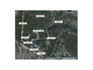 2681 High Lonesome, Leander, TX 78641 (#8436732) :: Forte Properties