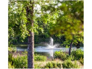 538 San Michelle Lane, Georgetown, TX 78628 (#8508142) :: Forte Properties