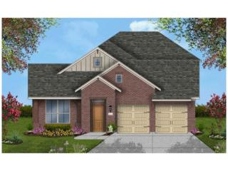 817 Glorietta Ln, Georgetown, TX 78628 (#8743096) :: Forte Properties