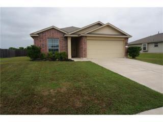 2732 Bluffstone Dr, Round Rock, TX 78665 (#8809347) :: Forte Properties