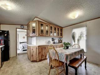 173 Boxcar Path, Kyle, TX 78640 (#8820886) :: Forte Properties